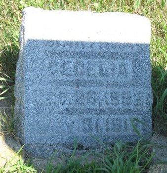 JOHNSON, MARTHEA CECELIA - Turner County, South Dakota   MARTHEA CECELIA JOHNSON - South Dakota Gravestone Photos