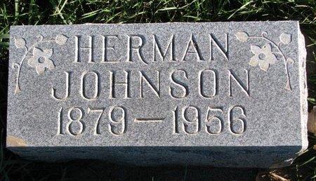 JOHNSON, HERMAN - Turner County, South Dakota | HERMAN JOHNSON - South Dakota Gravestone Photos