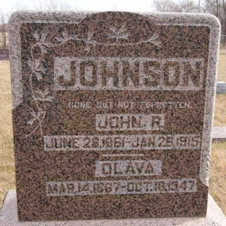 JOHNSON, OLAVA - Turner County, South Dakota | OLAVA JOHNSON - South Dakota Gravestone Photos