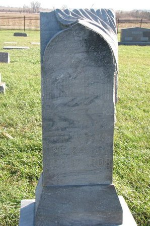 JOHNSON, JOHN A. - Turner County, South Dakota | JOHN A. JOHNSON - South Dakota Gravestone Photos