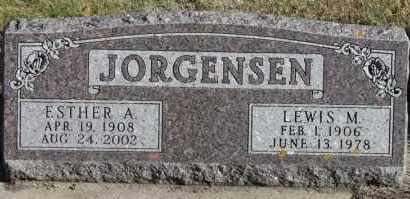 JORGENSEN, LEWIS M - Turner County, South Dakota | LEWIS M JORGENSEN - South Dakota Gravestone Photos