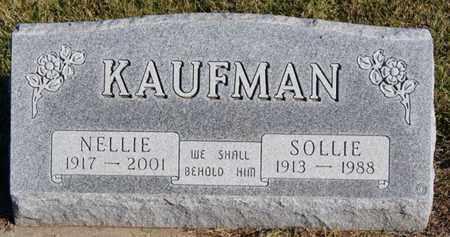 KAUFMAN, SOLLIE - Turner County, South Dakota | SOLLIE KAUFMAN - South Dakota Gravestone Photos