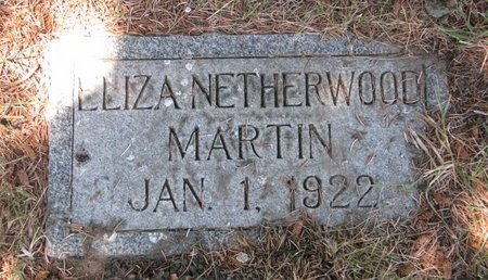 NETHERWOOD MARTIN, ELIZA - Turner County, South Dakota | ELIZA NETHERWOOD MARTIN - South Dakota Gravestone Photos