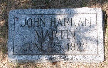 MARTIN, JOHN HARLAN - Turner County, South Dakota | JOHN HARLAN MARTIN - South Dakota Gravestone Photos