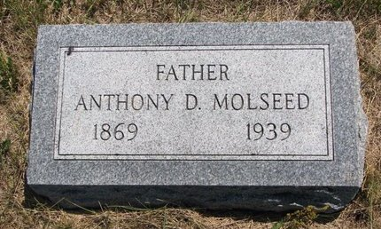 MOLSEED, ANTHONY D. - Turner County, South Dakota | ANTHONY D. MOLSEED - South Dakota Gravestone Photos