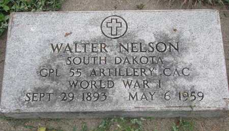 NELSON, WALTER (MILITARY) - Turner County, South Dakota | WALTER (MILITARY) NELSON - South Dakota Gravestone Photos