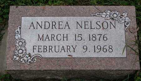 NELSON, ANDREA - Turner County, South Dakota | ANDREA NELSON - South Dakota Gravestone Photos