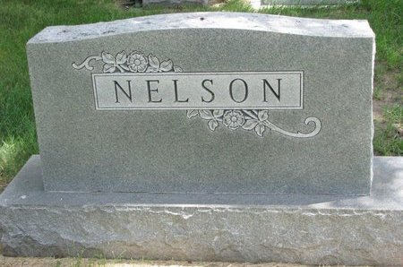 NELSON, *FAMILY MOUMENT - Turner County, South Dakota | *FAMILY MOUMENT NELSON - South Dakota Gravestone Photos