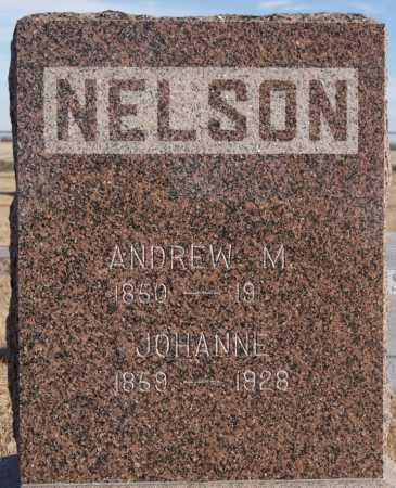 NELSON, ANDREW M - Turner County, South Dakota | ANDREW M NELSON - South Dakota Gravestone Photos