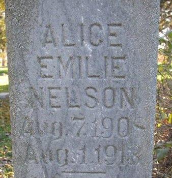 NELSON, ALICE EMILIE (CLOSE UP) - Turner County, South Dakota | ALICE EMILIE (CLOSE UP) NELSON - South Dakota Gravestone Photos