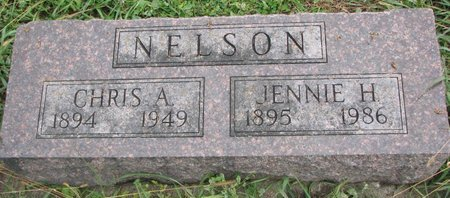STAHL NELSON, JENNIE H. - Turner County, South Dakota | JENNIE H. STAHL NELSON - South Dakota Gravestone Photos