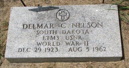 NELSON, DELMAR C. - Turner County, South Dakota | DELMAR C. NELSON - South Dakota Gravestone Photos