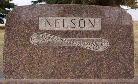 NELSON, FAMILY MARKER - Turner County, South Dakota   FAMILY MARKER NELSON - South Dakota Gravestone Photos