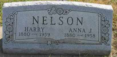 NELSON, ANNA J - Turner County, South Dakota | ANNA J NELSON - South Dakota Gravestone Photos