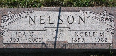 NELSON, NOBLE M. - Turner County, South Dakota | NOBLE M. NELSON - South Dakota Gravestone Photos