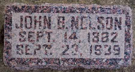 NELSON, JOHN B - Turner County, South Dakota | JOHN B NELSON - South Dakota Gravestone Photos