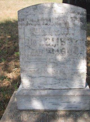 NELSEN, MANLEY T. - Turner County, South Dakota   MANLEY T. NELSEN - South Dakota Gravestone Photos