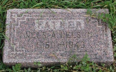 NELSON, NELS A. - Turner County, South Dakota | NELS A. NELSON - South Dakota Gravestone Photos