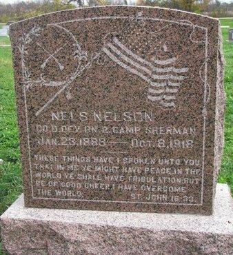 NELSON, NELS - Turner County, South Dakota | NELS NELSON - South Dakota Gravestone Photos