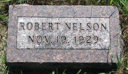NELSON, ROBERT - Turner County, South Dakota | ROBERT NELSON - South Dakota Gravestone Photos