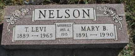 NELSON, T LEVI - Turner County, South Dakota | T LEVI NELSON - South Dakota Gravestone Photos