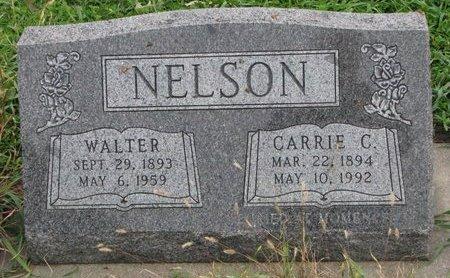 NELSON, WALTER - Turner County, South Dakota | WALTER NELSON - South Dakota Gravestone Photos