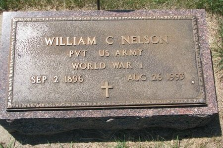 NELSON, WILLIAM C. - Turner County, South Dakota | WILLIAM C. NELSON - South Dakota Gravestone Photos