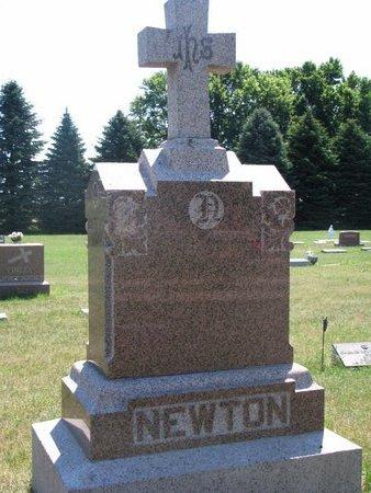NEWTON, *FAMILY MONUMENT - Turner County, South Dakota | *FAMILY MONUMENT NEWTON - South Dakota Gravestone Photos