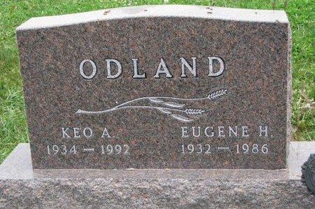 ODLAND, EUGENE H. - Turner County, South Dakota | EUGENE H. ODLAND - South Dakota Gravestone Photos