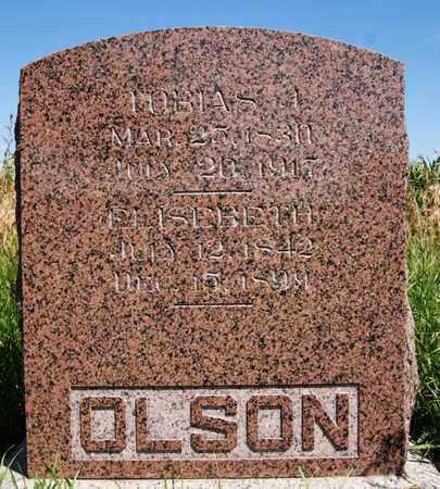 OLSON, TOBIAS J - Turner County, South Dakota   TOBIAS J OLSON - South Dakota Gravestone Photos