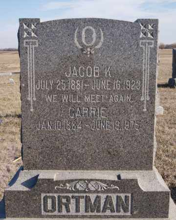 ORTMAN, CARRIE - Turner County, South Dakota | CARRIE ORTMAN - South Dakota Gravestone Photos