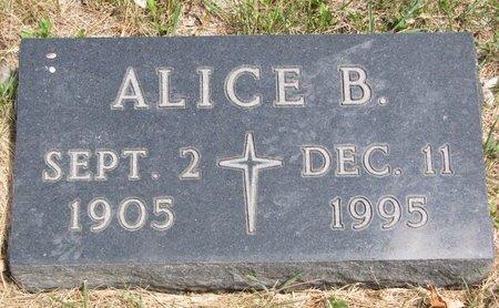 BRUNICK PAULSON, ALICE BERNICE - Turner County, South Dakota   ALICE BERNICE BRUNICK PAULSON - South Dakota Gravestone Photos