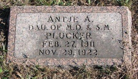 PLUCKER, ANTJE A. - Turner County, South Dakota   ANTJE A. PLUCKER - South Dakota Gravestone Photos
