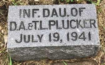 PLUCKER, INFANT - Turner County, South Dakota   INFANT PLUCKER - South Dakota Gravestone Photos