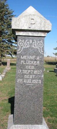 PLUCKER, MENNE ALBERT - Turner County, South Dakota | MENNE ALBERT PLUCKER - South Dakota Gravestone Photos