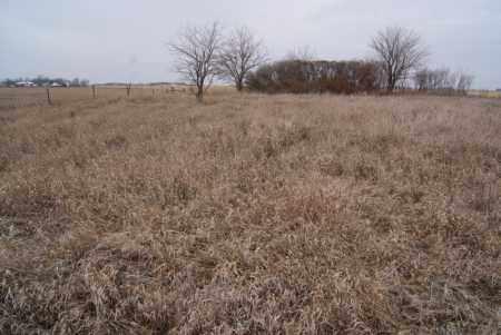 *SALEM EVANGELICAL, CEMETERY LONG VIEW - Turner County, South Dakota | CEMETERY LONG VIEW *SALEM EVANGELICAL - South Dakota Gravestone Photos