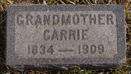 SATTER, CARRIE - Turner County, South Dakota | CARRIE SATTER - South Dakota Gravestone Photos