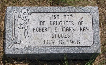 SNOOZY, LISA ANN - Turner County, South Dakota | LISA ANN SNOOZY - South Dakota Gravestone Photos