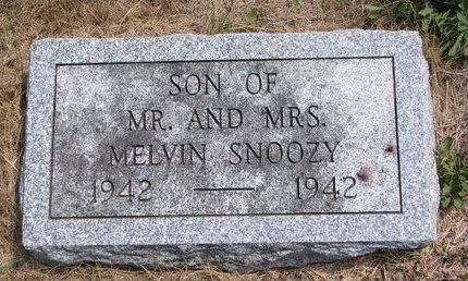 SNOOZY, SON - Turner County, South Dakota | SON SNOOZY - South Dakota Gravestone Photos