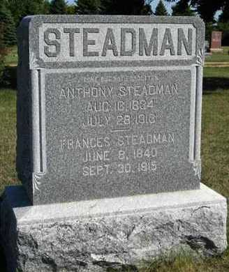 STEADMAN, ANTHONY - Turner County, South Dakota | ANTHONY STEADMAN - South Dakota Gravestone Photos