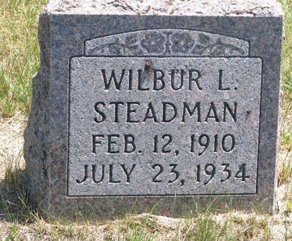 STEADMAN, WILBUR L. - Turner County, South Dakota | WILBUR L. STEADMAN - South Dakota Gravestone Photos
