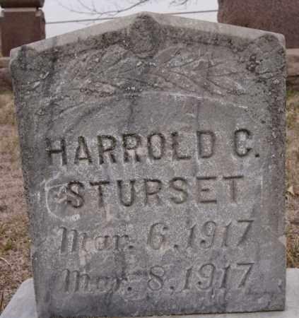 STURSET, HARROLD G - Turner County, South Dakota | HARROLD G STURSET - South Dakota Gravestone Photos