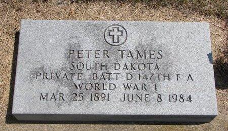 TAMES, PETER - Turner County, South Dakota   PETER TAMES - South Dakota Gravestone Photos