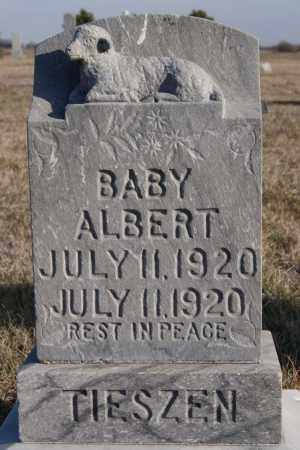 TIESZEN, ALBERT - Turner County, South Dakota | ALBERT TIESZEN - South Dakota Gravestone Photos