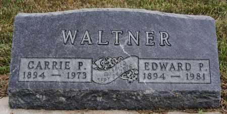 WALTNER, CARRIE P - Turner County, South Dakota | CARRIE P WALTNER - South Dakota Gravestone Photos