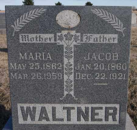 WALTNER, MARIA - Turner County, South Dakota | MARIA WALTNER - South Dakota Gravestone Photos