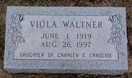 WALTNER, VIOLA - Turner County, South Dakota   VIOLA WALTNER - South Dakota Gravestone Photos