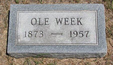 WEEK, OLE - Turner County, South Dakota | OLE WEEK - South Dakota Gravestone Photos