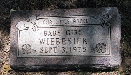 WIEBESIEK, BABY GIRL - Turner County, South Dakota | BABY GIRL WIEBESIEK - South Dakota Gravestone Photos