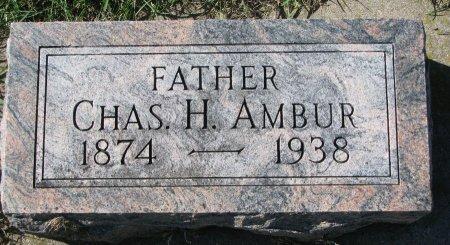 AMBUR, CHARLES H. - Union County, South Dakota | CHARLES H. AMBUR - South Dakota Gravestone Photos